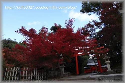 Dsc00212_convert_20111125211513_2